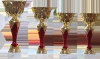 Ke každému turnaji patří pohár.