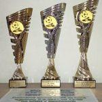 Poháry pro zúčastněné na turnaji 15. ročníku Memoriálu J. Vakoče